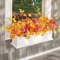 Mum Fall Window Box Filler   Grandin Road