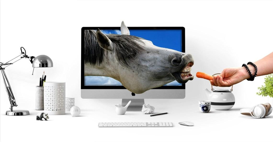 tête de cheval dans écran d'ordi