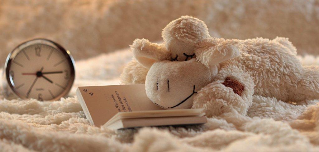 peluche lisant un livre qui a besoin de se reposer