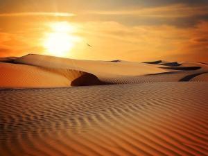 Un couché de soleil dans le désert