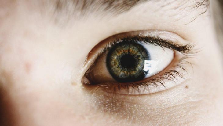 Un oeil vert