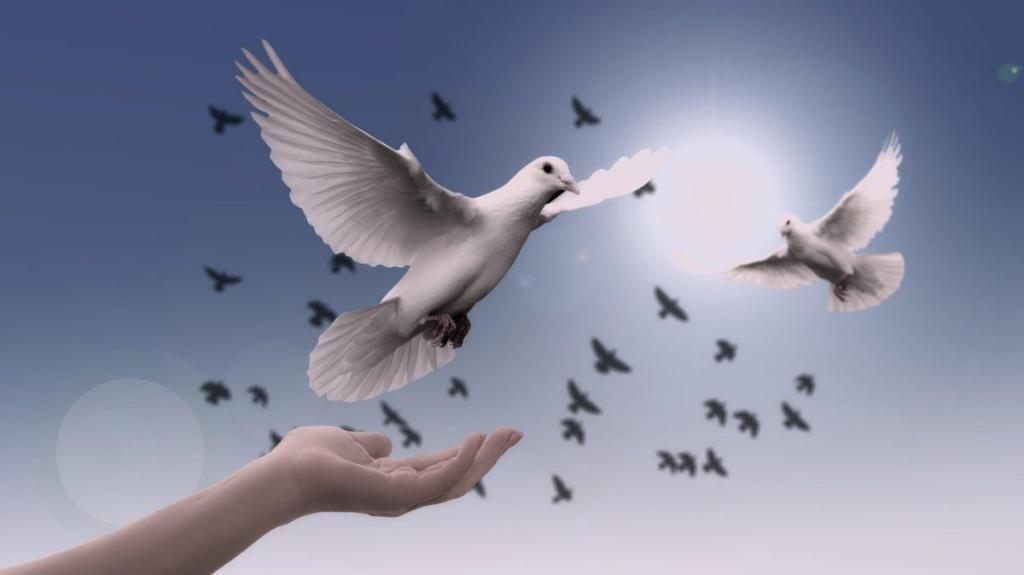 Des colombes prenant leur envol