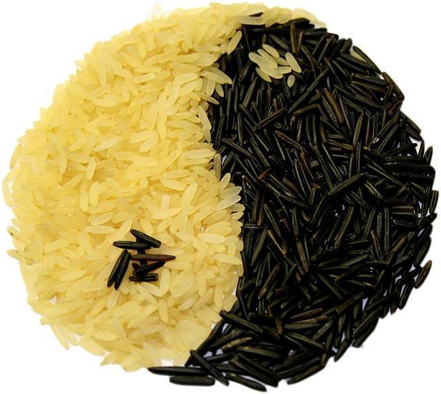 DU riz en forme de yin et yang