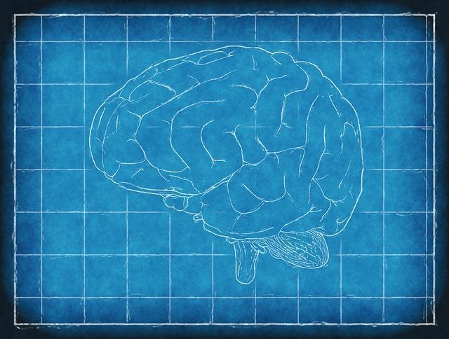 Un cerveau réalisant un choix