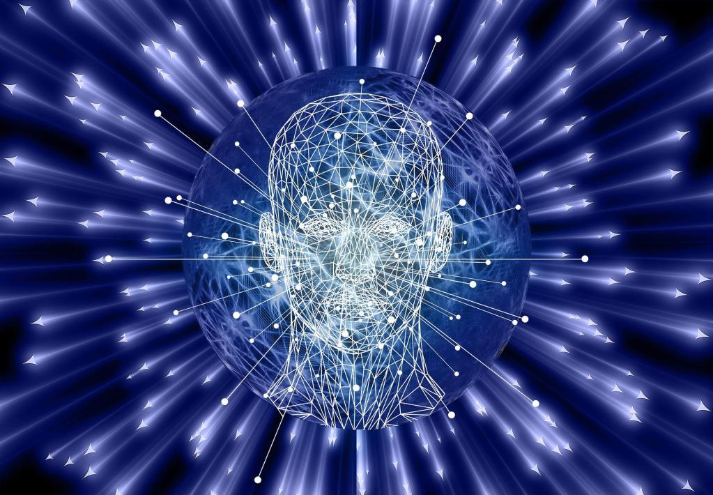 Comprendre les zones du cerveau pour grandir et réussir
