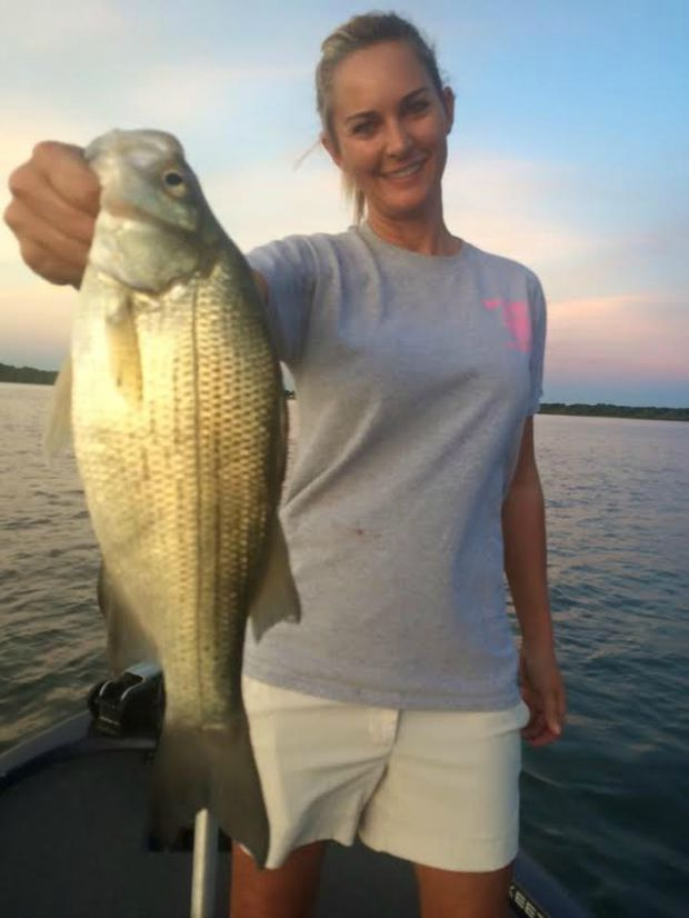 Evening white bass action on Grand Lake