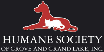 October is Adopt-a-Shelter-Dog Month at Grove Humane Society