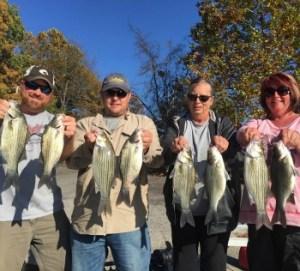 Fall bite white bass at Grand Lake