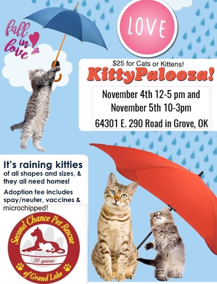Kitty Palooza in Grove, OK