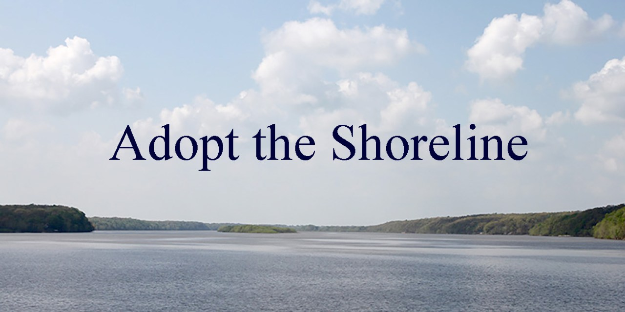 Adopting The Shoreline
