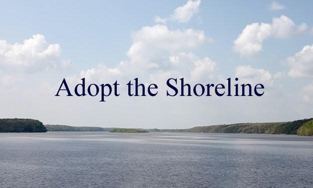 Adopting The Shoreline