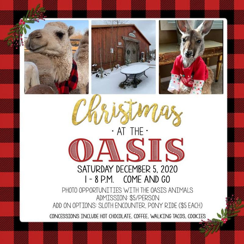 Christmas at the Oasis 2020