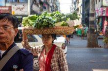 veg carrier