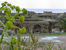view of Carthage