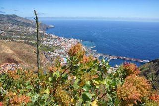 coastal view La Palma