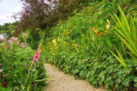 Monet flowers