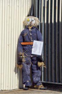 Stromness scarecrow