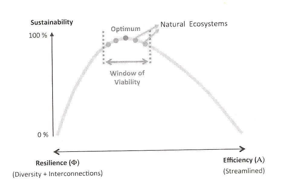 Economics: Creating A Monetary Ecosystem (2/2)