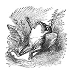 grandville-animals-080-grandville-pepe