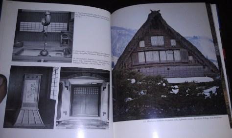 IMAG1261
