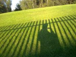 just a shadow of myself in low sunshine