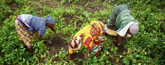 Farmers in Tanzania. Credit :Bill & Melinda Gates Foundation