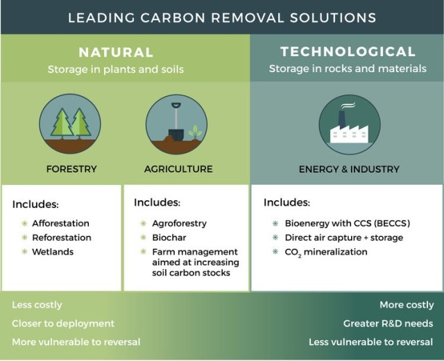 Graphic showing leading carbon removal solutions