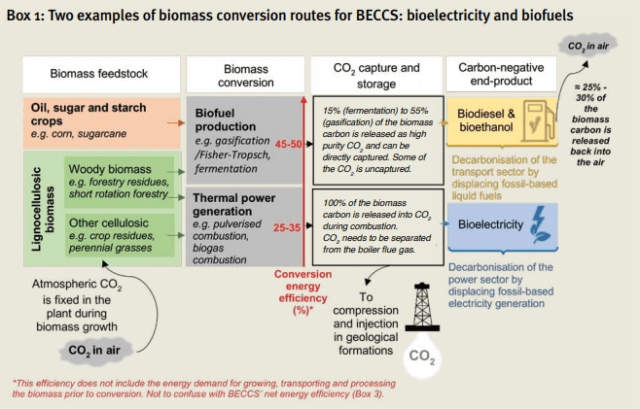 Chart showing Two examples of biomass conversion routes for BECCS: bioelectricity and biofuels