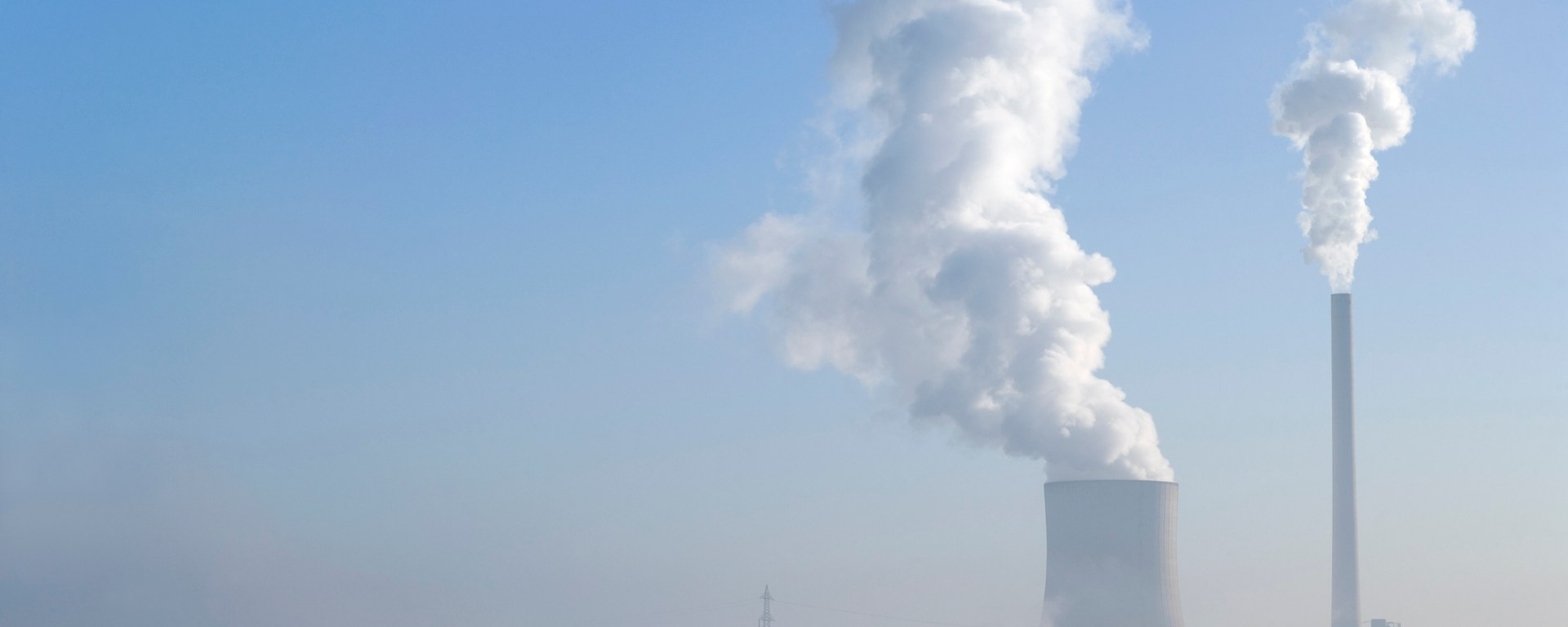 Coal-fired Power station with steaming cooling tower and lonesome tree