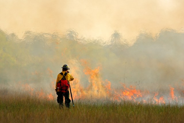 Person dressed in firefighter gear standing in front of a burning meadow.