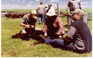 ranch-branding-2003-002