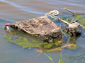 5 Things You Can Learn From Shopping Cart Abandonment
