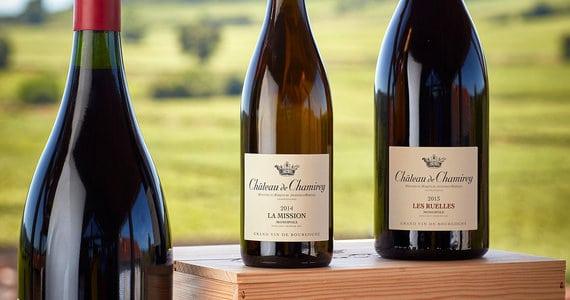 Dijon wine holiday - credits Dom_Devillard_S_Chapuis_178