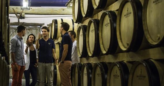 Champagne Tour barrels