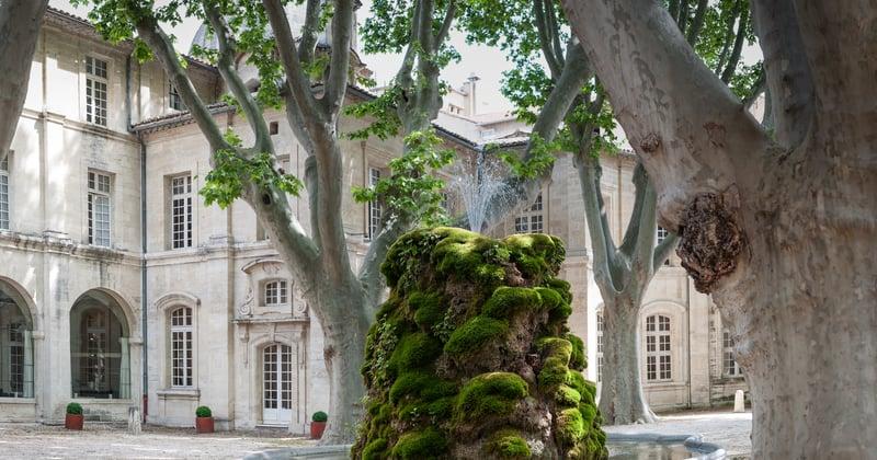 Credits Cloitre Saint Louis Avignon