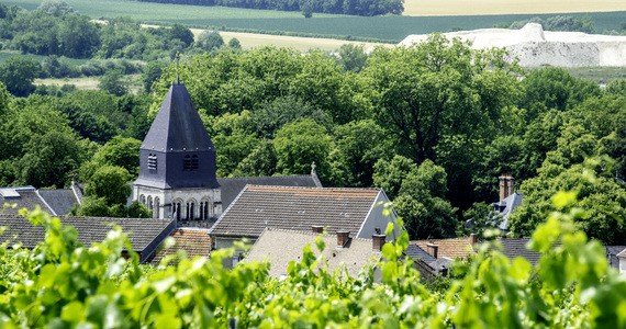 Reims Day Tour - Credits Vine Escape