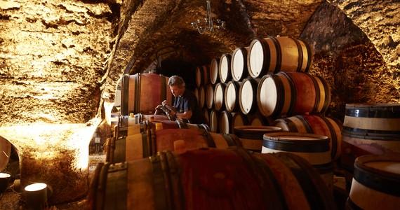 Wine tour in Burgundy - Credits- Beaune Tourisme © J. Piffaut