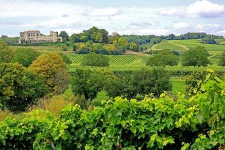 Cognac tour - Bouteville_chateau - vignoble - 6912@Crédits BRUNET Jean-Claude Charente Tourisme