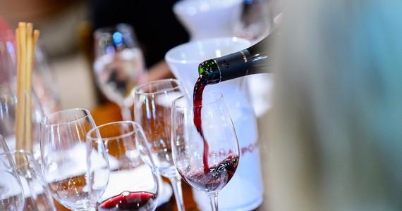 wine tasting in France - credits Bodegas Bilbainas