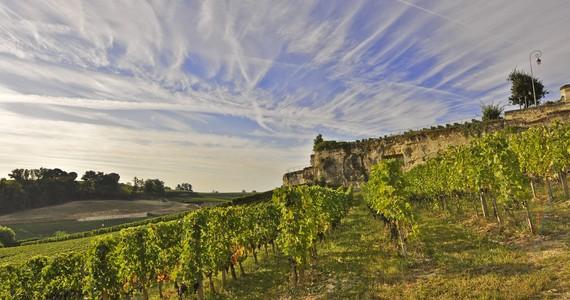 wine tasting in France- crédit Heurisko