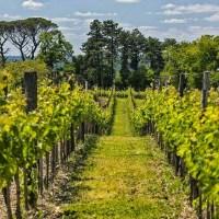 Le Bout du Monde Bordeaux Supérieur 2012