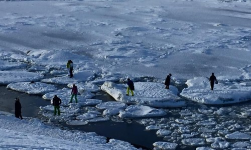 Tourists Walk On Ice Floe, May Have Death Wish