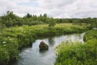 Best Place To Enjoy a Zen Moment: Elliðaárdalur