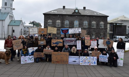 Icelanders Against Whaling Release Open Letter To The Government