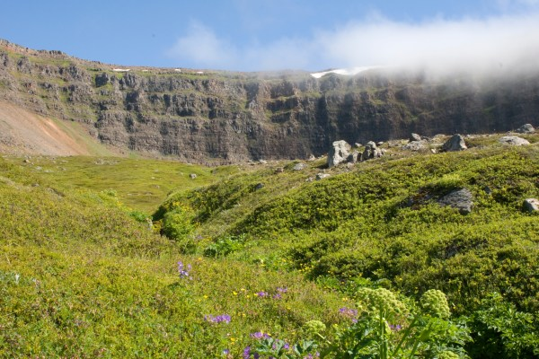 "Winner of the ""Best tour"" in the westfjords"