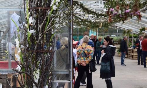 Flowers In Town: Blóm Í Bæ Festival Brings Hveragerði To Life