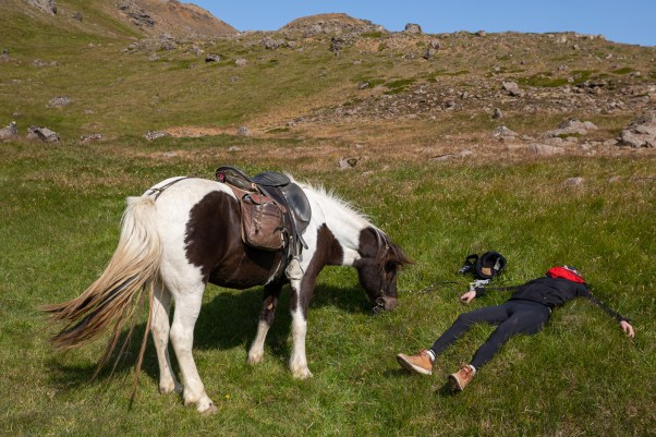 Pleasures of horseback riding in Iceland :)