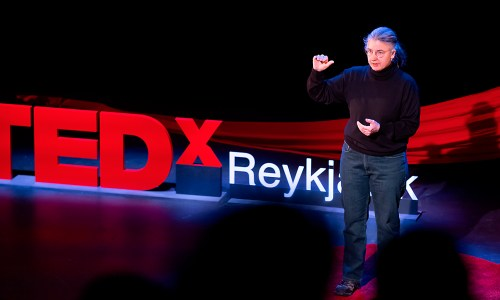 TEDxReykjavík: Thank You For Coming To My TED Talk