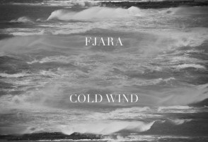 Track By Track: 'Cold Wind' By Fjara