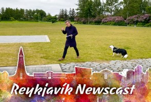 Reykjavik Newscast#11: The Kári Testing Drama Continues, Just Play Ja Ja Ding Dong Already